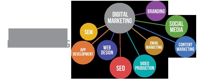 Tuyển Digital Marketing
